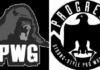 best wrestling promotions