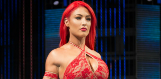 eva marie leaves wwe
