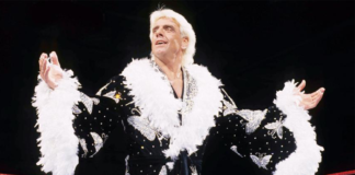 ric flair career highlights