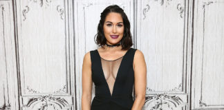 brie bella wwe return
