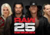 wwe raw 25th anniversary