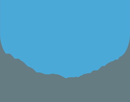 WiseBanyan-review